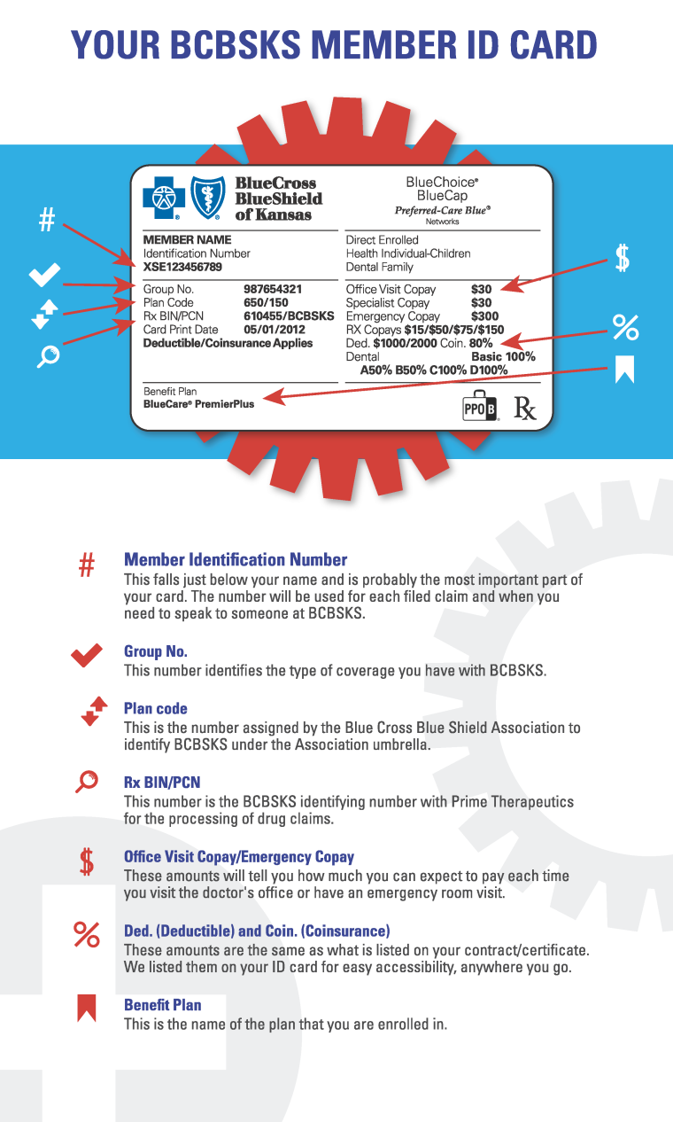 IDCard Infographic