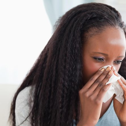 Can Echinacea help my head cold